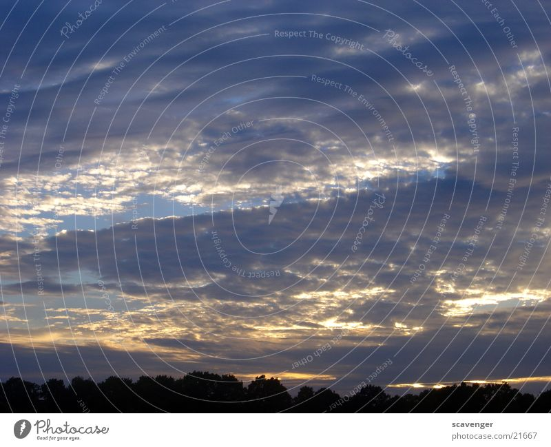 Sky White Sun Blue Clouds Bright Lighting Evening sun Images of the heavens Horizontal clouds Low cloud