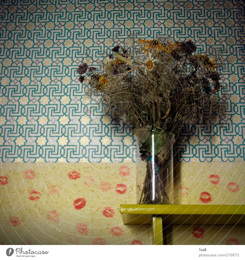 Room Flat (apartment) Retro Lips Decoration Living or residing Wallpaper Trashy Bouquet Still Life Shriveled Original Mouth Pout Lipstick Old fashioned