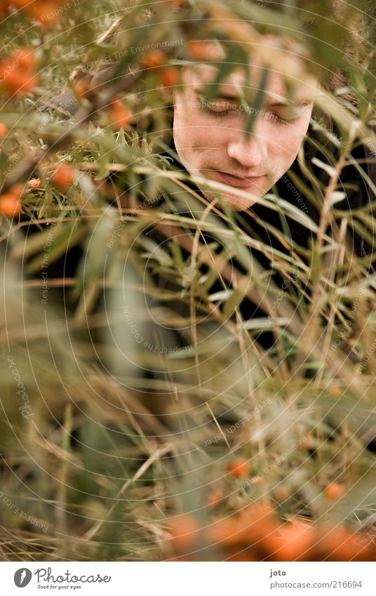 in the sea buckthorn bush I Fruit Sallow thorn Masculine Young man Youth (Young adults) Man Adults Face Nature Plant Bushes Twigs and branches Esthetic Fresh