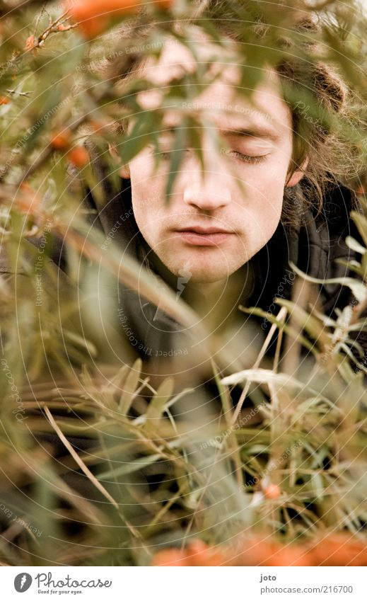 in the sea buckthorn bush II Fruit Sallow thorn Masculine Young man Youth (Young adults) Man Adults Face Nature Plant Branch Bushes Discover Relaxation Dream