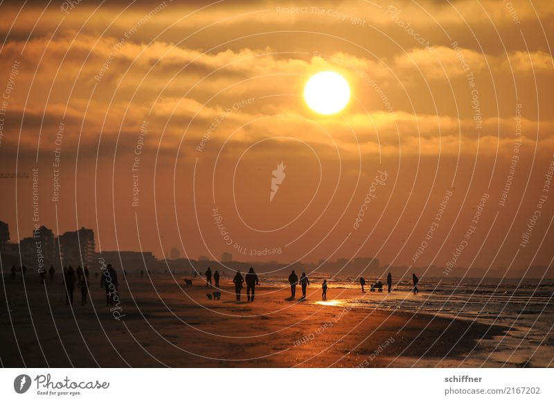 Sun Landscape Ocean House (Residential Structure) Clouds Beach Yellow Coast Exceptional Couple Group Brown Orange Going Friendship Waves