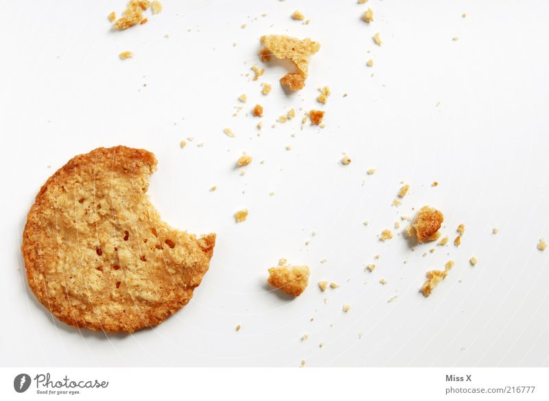 kexxx Food Dough Baked goods Candy Nutrition Delicious Round Sweet Dry Crumbs Cookie Bite Colour photo Studio shot Close-up Deserted Isolated Image