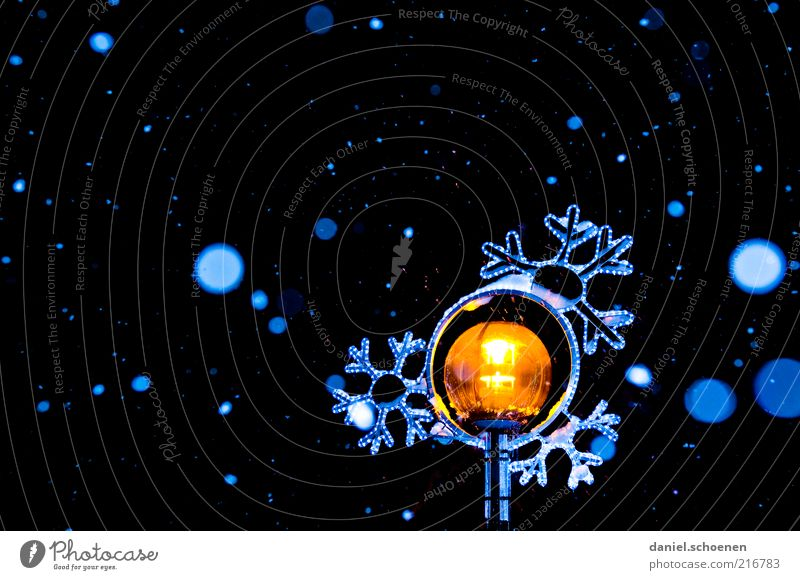 White Blue Winter Calm Black Yellow Snow Snowfall Ice Frost Illuminate Night Hover Snowflake