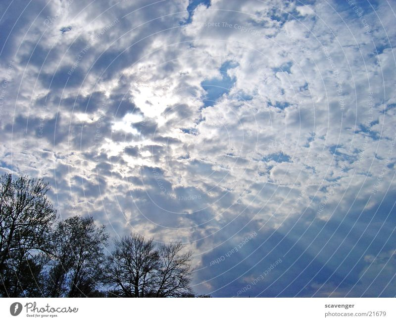 Sky White Sun Blue Clouds Bright Lighting Lake Constance Images of the heavens Horizontal clouds Low cloud