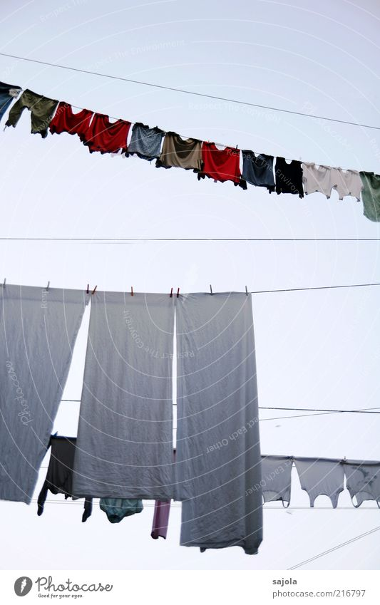 washing day Living or residing Clothing T-shirt Hang Multicoloured Red White Portrait format Pure Laundry Clothesline Rag Dry Colour photo Exterior shot
