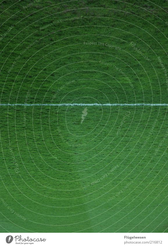 Christoph Daum Sports Ball sports Sporting Complex Football pitch Line Sideline Soccer Colour photo Exterior shot Day Grass surface White Green Detail Deserted