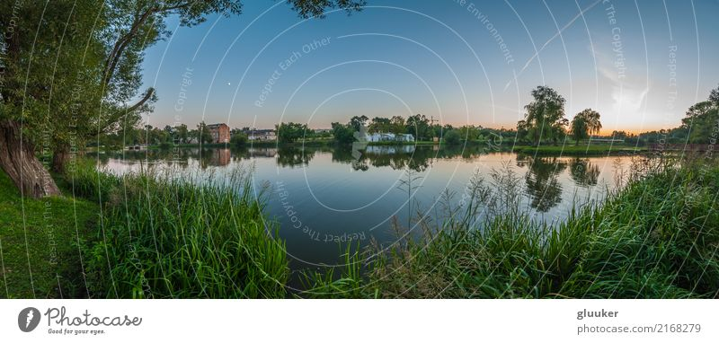 panoramic view from the coast through a lake Beautiful Mirror Nature Landscape Plant Water Sky Sunrise Sunset Summer Warmth Tree Grass Bushes Park Coast Pond