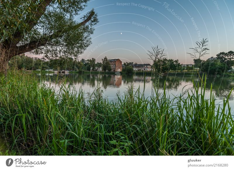 evening landscape. view from the coast Beautiful Mirror Nature Landscape Sky Tree Grass Bushes Park Coast Pond Lake River Building Old Wet Vantage point water