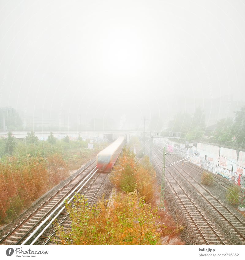 autumn timetable Sky Autumn Fog Tree Bushes Transport Means of transport Traffic infrastructure Passenger traffic Public transit Rail transport Train travel