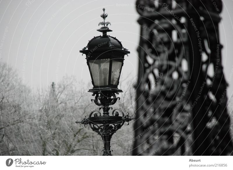 Old White Beautiful Winter Black Gray Moody Park Ice Frost Lantern Historic Street lighting Old fashioned Curlicue Art nouveau