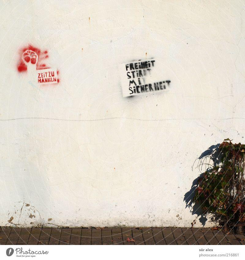 Plant Red Black To talk Wall (building) Freedom Stone Wall (barrier) Graffiti Art Facade Safety Make Sidewalk Society Against