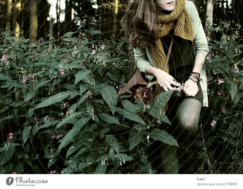 short rest Camera Feminine 1 Human being Autumn Wild plant Forest Bag Scarf Brunette Smiling Curiosity Subdued colour Exterior shot Copy Space left Day