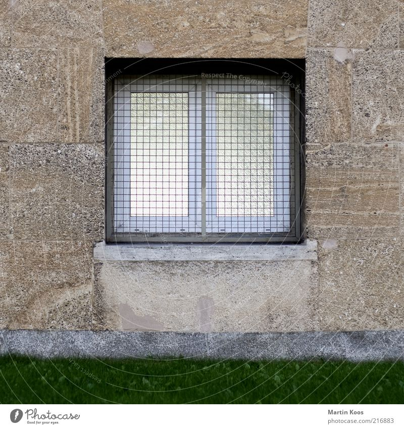 House (Residential Structure) Window Wall (building) Architecture Garden Wall (barrier) Line Bright Facade Arrangement Living or residing Safety Gloomy Lawn Simple Individual