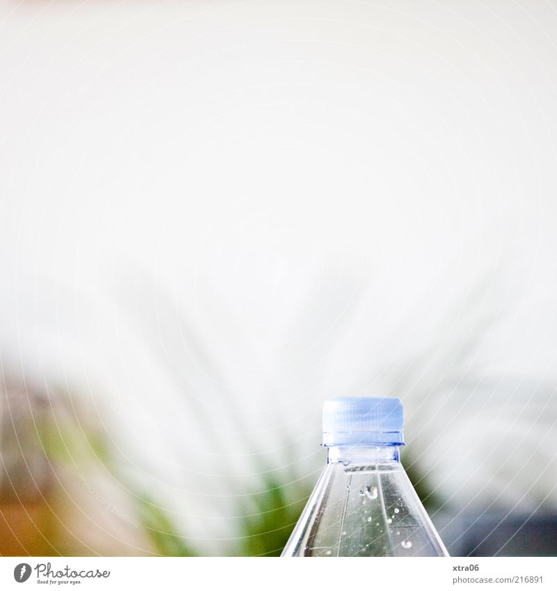 thirsty? Bottle Authentic Neck of a bottle Bottle of water Wall (building) Part of the plant Drops of water Colour photo Interior shot Copy Space top White