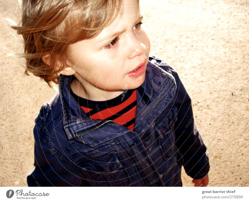 Human being Child Blue Red Face Boy (child) Head Infancy Blonde Going Natural Masculine Toddler Jacket Watchfulness Striped