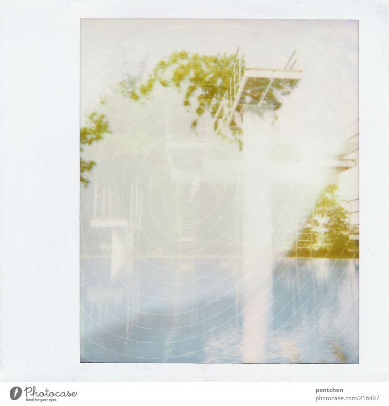 Water White Tree Blue Summer Esthetic Ladder Handrail Polaroid Double exposure Aquatics Springboard Open-air swimming pool Things Sports Sporting Complex
