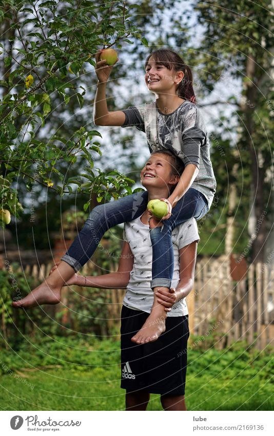 Nature Tree Girl Environment Autumn Healthy Happy Garden Food Work and employment Fruit Nutrition Infancy Happiness Help Agriculture