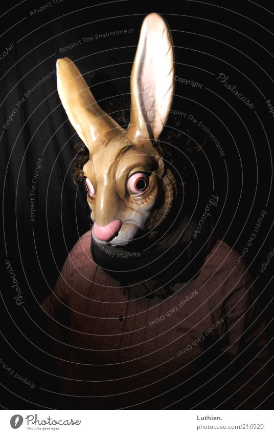 Human being Animal Dark Funny Brown Pink Exceptional Crazy Cool (slang) Threat Observe Curiosity Plastic Mask Carnival Creepy