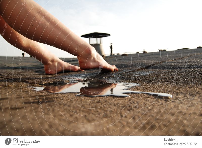 hot roof Breathe Touch Esthetic Free Wet Brown Joy Contentment Puddle Colour photo Exterior shot Day Shadow Contrast Sunlight Shallow depth of field
