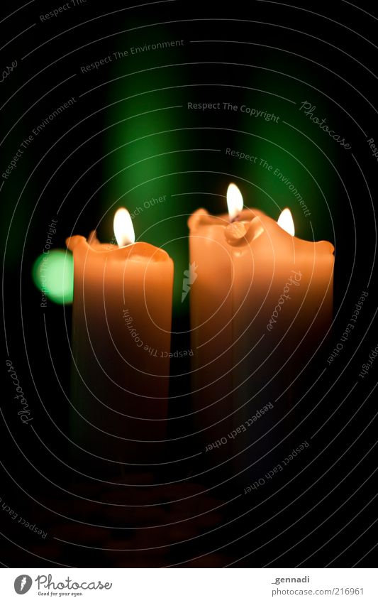 Green Black Yellow Dark Religion and faith Crazy Gloomy Candle Flame Illuminate Anticipation Candlelight Illuminating Candlelit ambience Candle flame