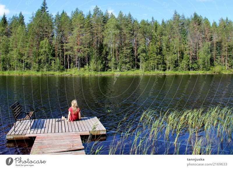 Young beautiful woman enjoy the nature of Finland, Karelia Human being Woman Nature Vacation & Travel Youth (Young adults) Summer Beautiful Tree Landscape