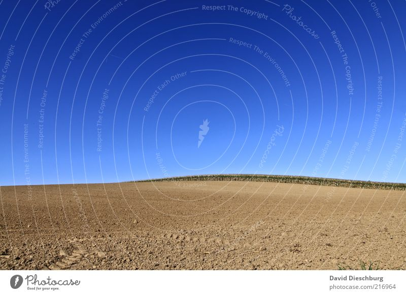 vast country Nature Landscape Sky Cloudless sky Autumn Beautiful weather Warmth Drought Field Blue Brown Earth Ground Horizon Agriculture Plowed Dry Undulating