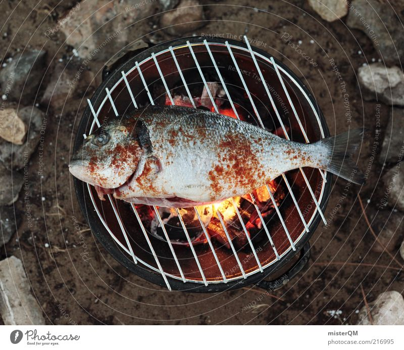 Animal Freedom Fish Esthetic Fresh Fire Fish Dish Delicious Barbecue (event) Appetite Dinner Barbecue (apparatus) Cooking & Baking Action