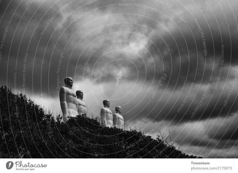 Nature Plant Landscape Black Environment Emotions Art Gray Weather Stand Concrete Hill Tourist Attraction Sculpture Denmark