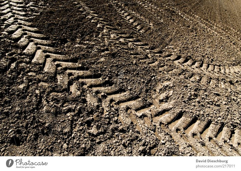 TRÄGÄ DRIVING Earth Drought Field Brown Tractor track Tire tread Tracks Loam Agriculture Plowed Dry Diagonal Colour photo Exterior shot Detail