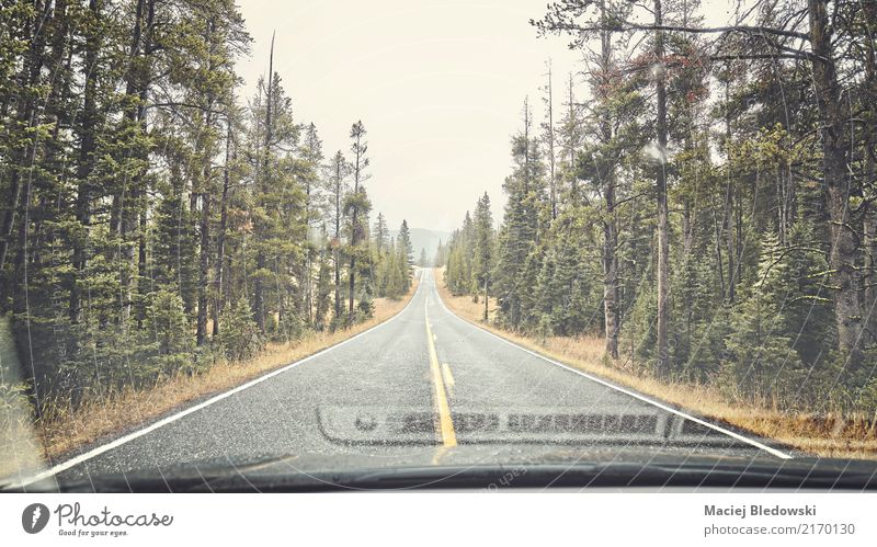 Mountain rainy road. Vacation & Travel Trip Adventure Nature Rain Forest Street Highway Car Authentic Wet Retro Green Moody Homesickness Loneliness drive