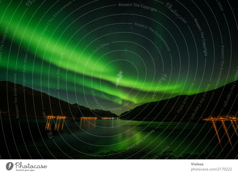 Sky Nature Green Clouds Autumn Exceptional Horizon Mysterious Infinity Surrealism Norway Horizontal Night sky Fjord Humble Aurora Borealis