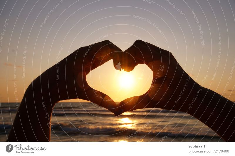 hand shaped heart in front of the suset, friendship love hands sunset together beach relationship gesture vacation couple summer summertime sunrise sea travel