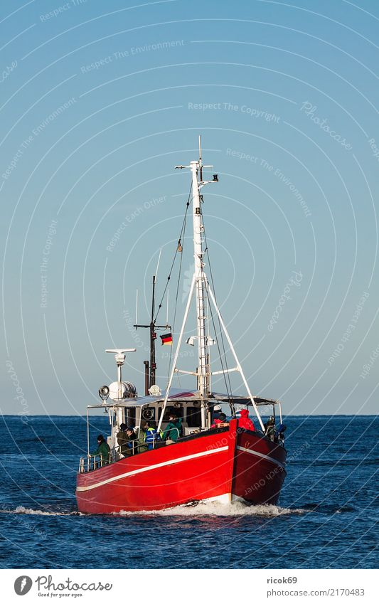 A fishing boat on the Baltic Sea near Warnemünde Vacation & Travel Tourism Ocean Nature Water Coast Fishing boat Watercraft Blue Red Tradition Environment