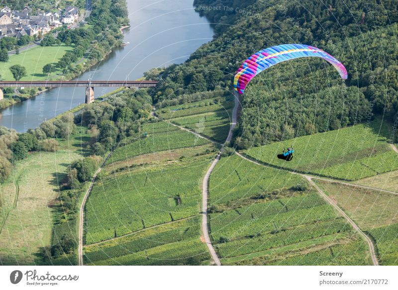 flyby Vacation & Travel Tourism Trip Adventure Summer Sports Paragliding Paraglider Human being Masculine 1 Nature Landscape Plant Water Beautiful weather Hill