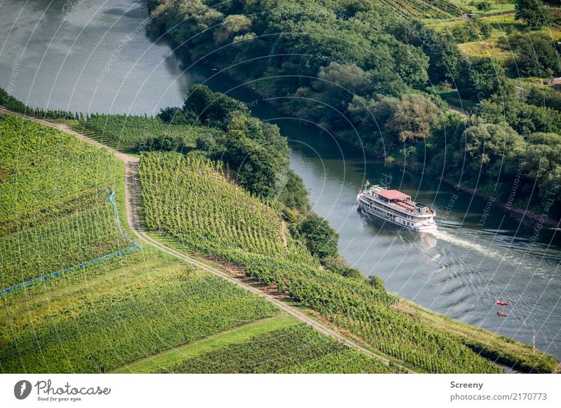 A Moselle trip, it's funny... Vacation & Travel Tourism Trip Nature Landscape Plant Water Summer Beautiful weather Tree Bushes Agricultural crop Field Hill