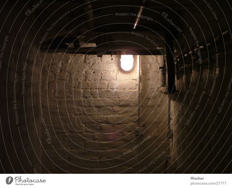 cellar Cellar Light Dark Black Eerie Creepy Evil House (Residential Structure) Under Light switch Harrowing Architecture Earth