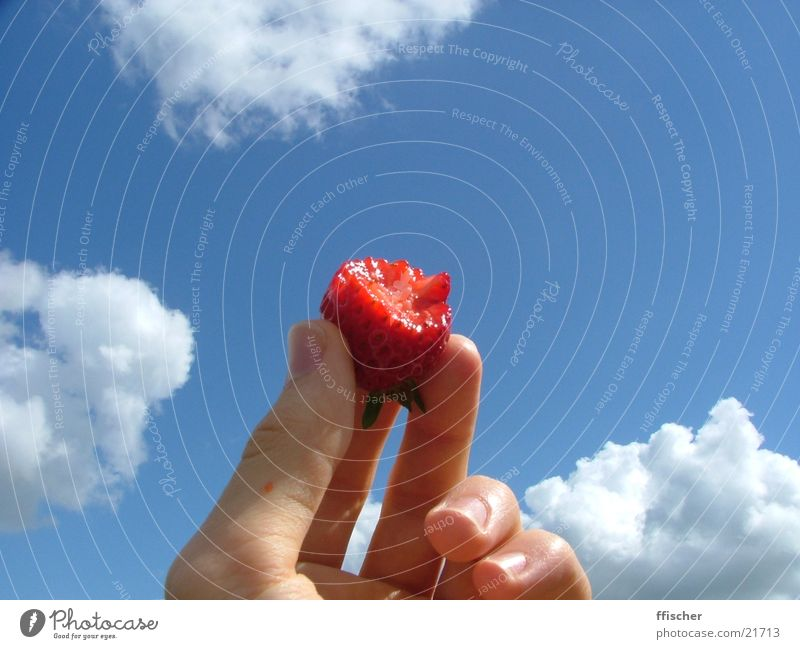 Hand Sky Blue Clouds Nutrition Fruit Obscure Strawberry