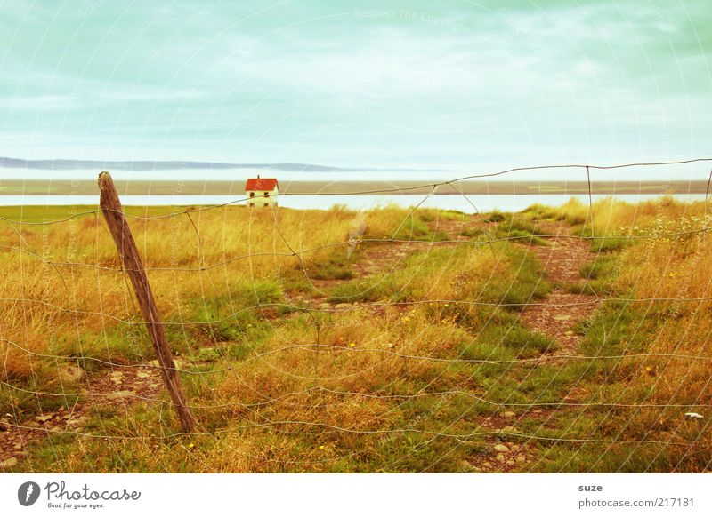 Way to the house Vacation & Travel House (Residential Structure) Environment Nature Landscape Elements Horizon Beautiful weather Meadow Coast Lakeside River Hut