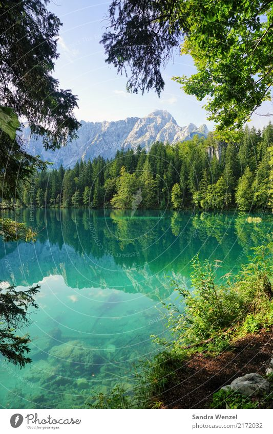 Nature Plant Summer Beautiful Water Landscape Relaxation Calm Mountain Environment Lanes & trails Exceptional Swimming & Bathing Lake Hiking Glittering