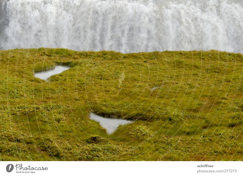 Run-up and a header in... Grass Moss Meadow Canyon Waterfall Gullfoss Iceland Puddle Loud Flow Two-piece Exterior shot Colour photo Deserted Massive Large