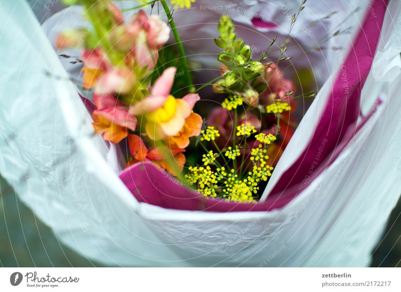 Flower Blossom Birthday Gift Logistics Bouquet Packaging Paper bag Carrying Bag Plastic bag Packaged Sack Box up