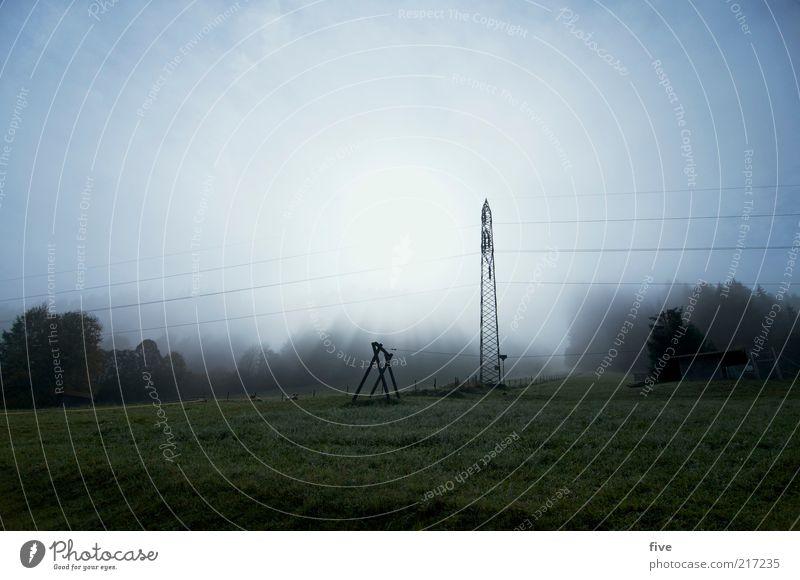 Nature Tree Plant Sun Environment Landscape Meadow Cold Mountain Weather Field Fog Alps Electricity pylon Swing Telegraph pole