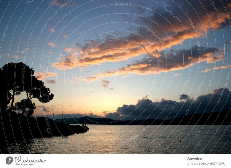 Nature Water Sky Tree Ocean Blue Summer Vacation & Travel Clouds Emotions Landscape Air Moody Orange Coast Waves
