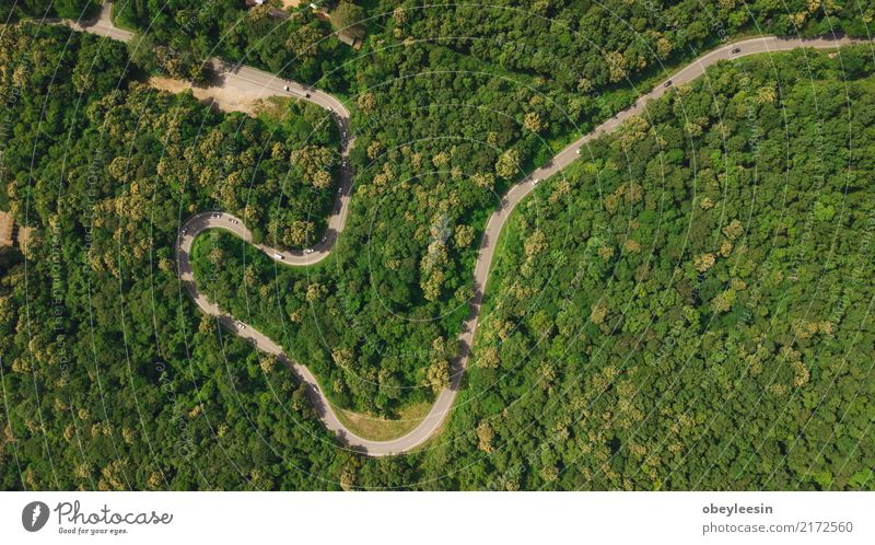 Aerial top view top view of the road through the trees ...