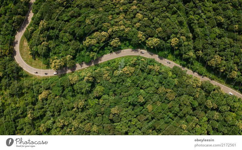 Aerial top view top view of the road through the trees, Calm Vacation & Travel Tourism Trip Summer Nature Landscape Fog Tree Grass Leaf Park Forest Street