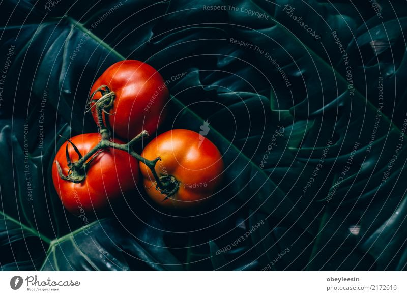Close-up of fresh, ripe tomatoes on wood background Vegetable Herbs and spices Vegetarian diet Diet Summer Garden Group Nature Plant Leaf Wood Growth Fresh