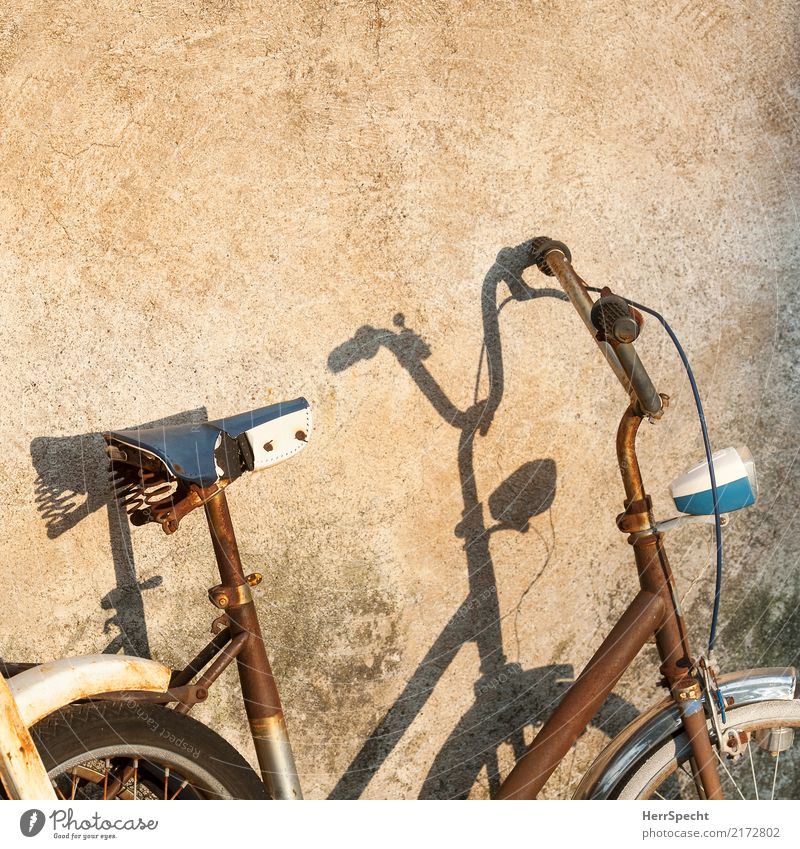 Old Wall (building) Wall (barrier) Exceptional Brown Retro Bicycle Esthetic Gloomy Cycling Transience Decline Rust Trashy Vehicle Shadow play