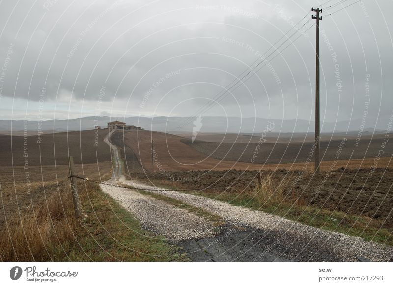 Vacation & Travel Clouds Loneliness Far-off places Relaxation Gray Lanes & trails Landscape Brown Field Earth Infinity Longing Hill Farm Electricity pylon