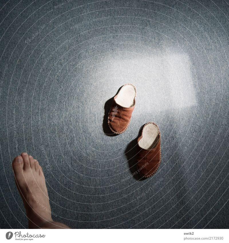 Window Movement Feet Walking Under Carpet Stride Eerie Rectangle Shaft of light Arise Slippers