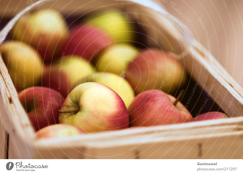 thanksgiving Food Fruit Apple Nutrition Organic produce Delicious Apple harvest Basket Crate Autumn Autumnal Healthy Eating Food photograph Colour photo